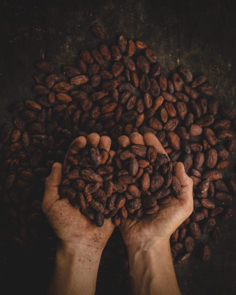 zamiennik kakao